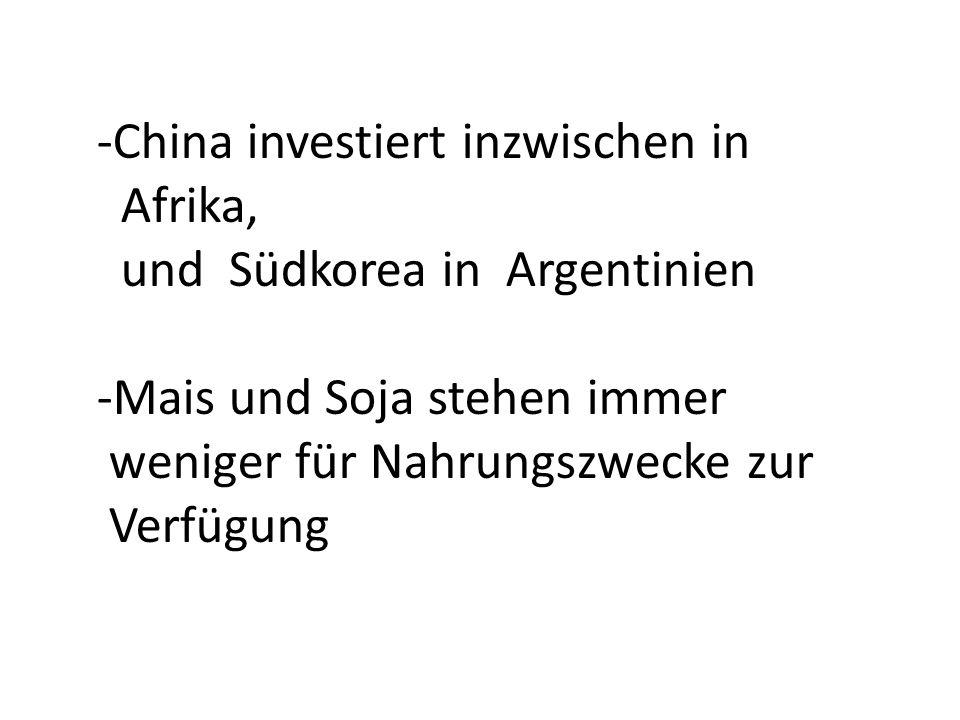 -China investiert inzwischen in Afrika, und Südkorea in Argentinien -Mais und Soja stehen immer weniger für Nahrungszwecke zur Verfügung