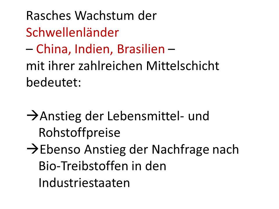 Rasches Wachstum der Schwellenländer – China, Indien, Brasilien – mit ihrer zahlreichen Mittelschicht bedeutet:  Anstieg der Lebensmittel- und Rohstoffpreise  Ebenso Anstieg der Nachfrage nach Bio-Treibstoffen in den Industriestaaten