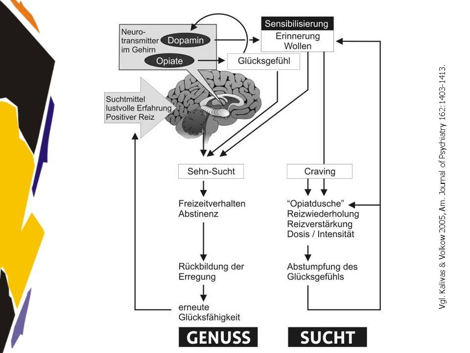 www.seminare-ps.net Vgl. Kalivas & Volkow 2005, Am. Journal of Psychiatry 162:1403-1413.