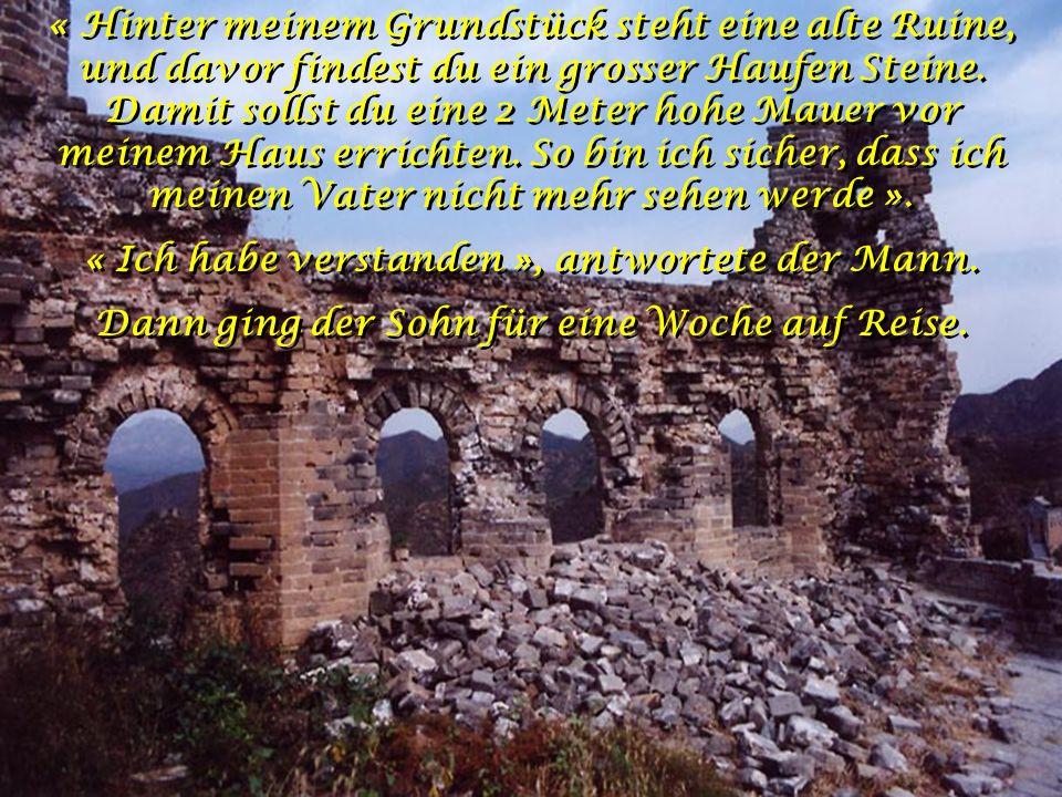 « Hinter meinem Grundstück steht eine alte Ruine, und davor findest du ein grosser Haufen Steine.