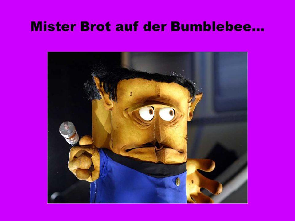 Mister Brot auf der Bumblebee...