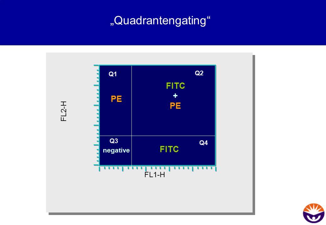 """""""Quadrantengating"""" FL1-H FL2-H FITC + PE FITC PE negative Q2 Q4 Q3 Q1"""