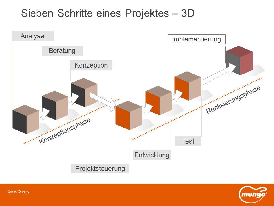 Sieben Schritte eines Projektes – 3D Analyse Beratung Konzeption Entwicklung Projektsteuerung Test Konzeptionsphase Realisierungsphase Implementierung