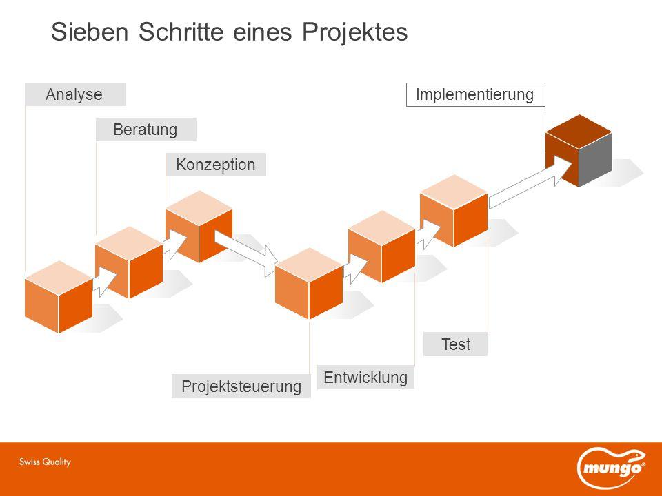 Sieben Schritte eines Projektes Analyse Beratung Konzeption Entwicklung Projektsteuerung Test Implementierung