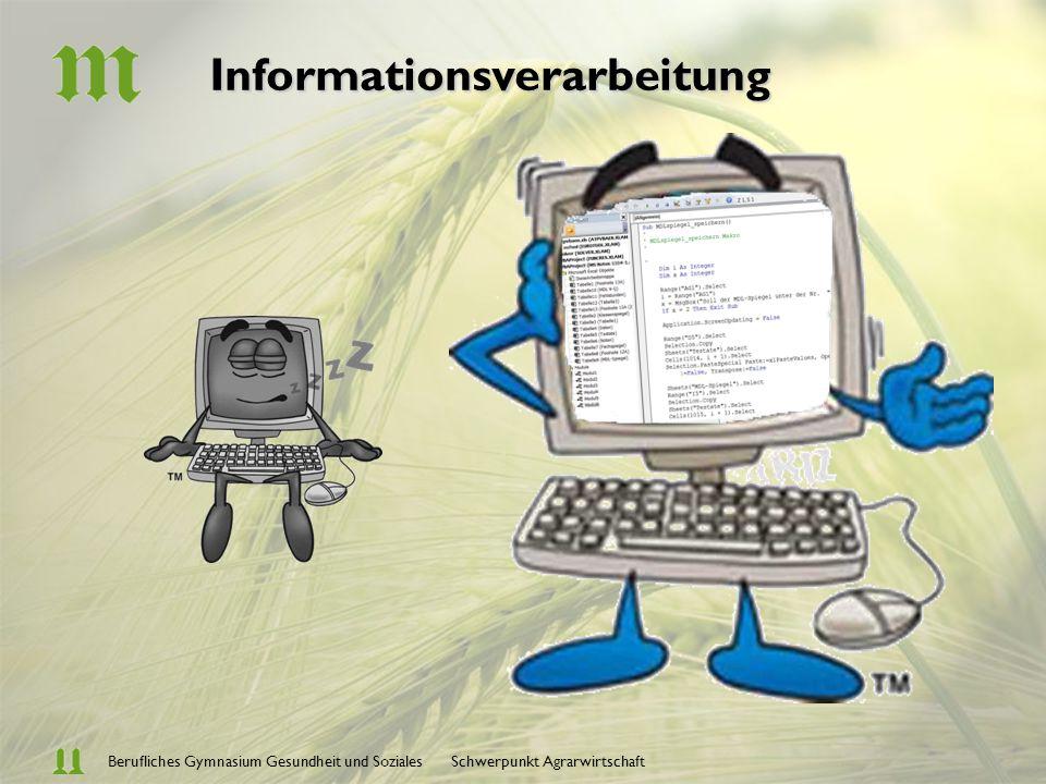 Berufliches Gymnasium Gesundheit und Soziales Schwerpunkt AgrarwirtschaftInformationsverarbeitung Datenverarbeitungssysteme, Office-Einführung Interne