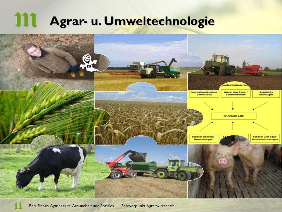 Berufliches Gymnasium Gesundheit und Soziales Schwerpunkt Agrarwirtschaft Agrar- u. Umweltechnologie Boden als Lebensraum u. Standortfaktor Pflanzener