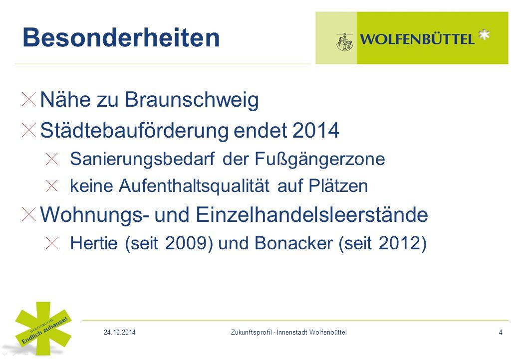 Nähe zu Braunschweig Städtebauförderung endet 2014 Sanierungsbedarf der Fußgängerzone keine Aufenthaltsqualität auf Plätzen Wohnungs- und Einzelhandel