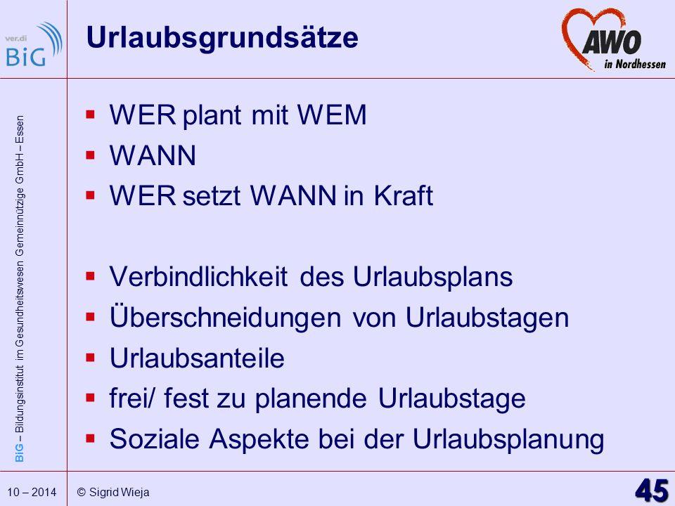 BiG – Bildungsinstitut im Gesundheitswesen Gemeinnützige GmbH – Essen 45 10 – 2014 © Sigrid Wieja Urlaubsgrundsätze  WER plant mit WEM  WANN  WER s