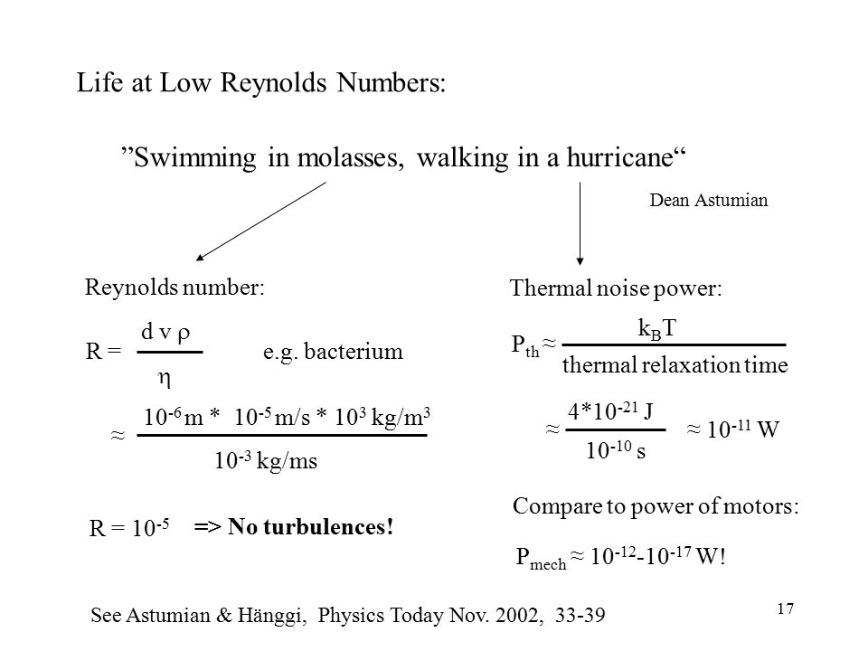 "Life at Low Reynolds Numbers: ""Swimming in molasses, walking in a hurricane"" Dean Astumian P th ≈ thermal relaxation time kBTkBT ≈ 10 -11 W 10 -10 s 4"