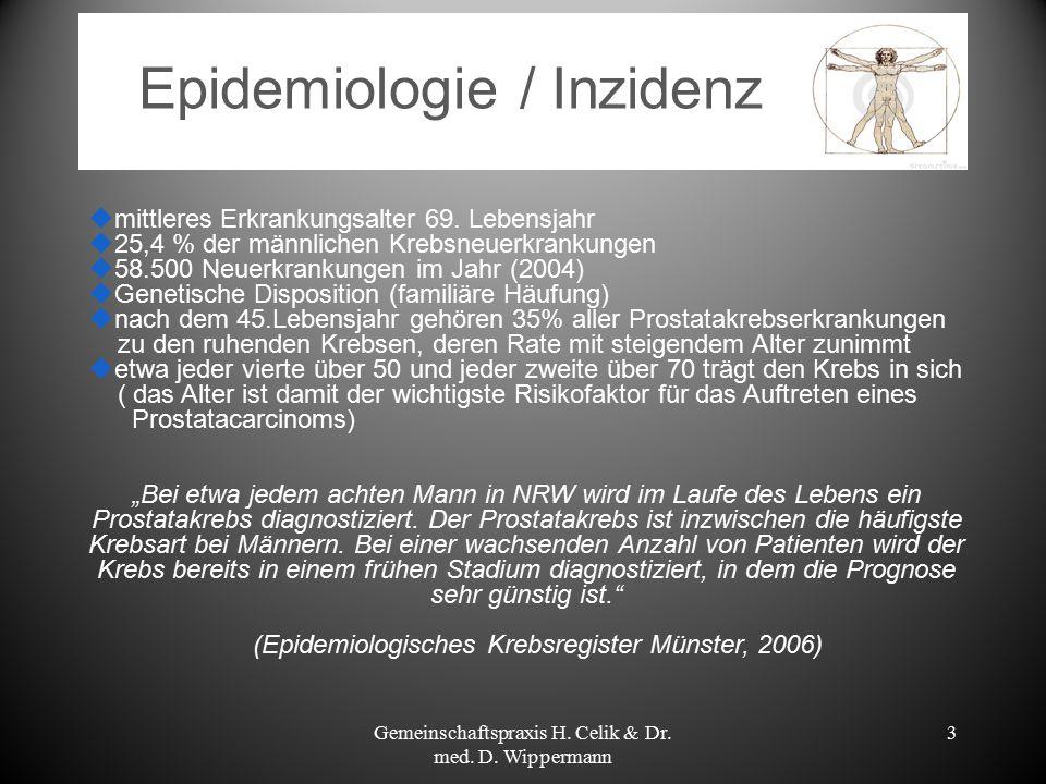 Aufbau/Lage der Prostata Gemeinschaftspraxis H. Celik & Dr. med. D. Wippermann 4