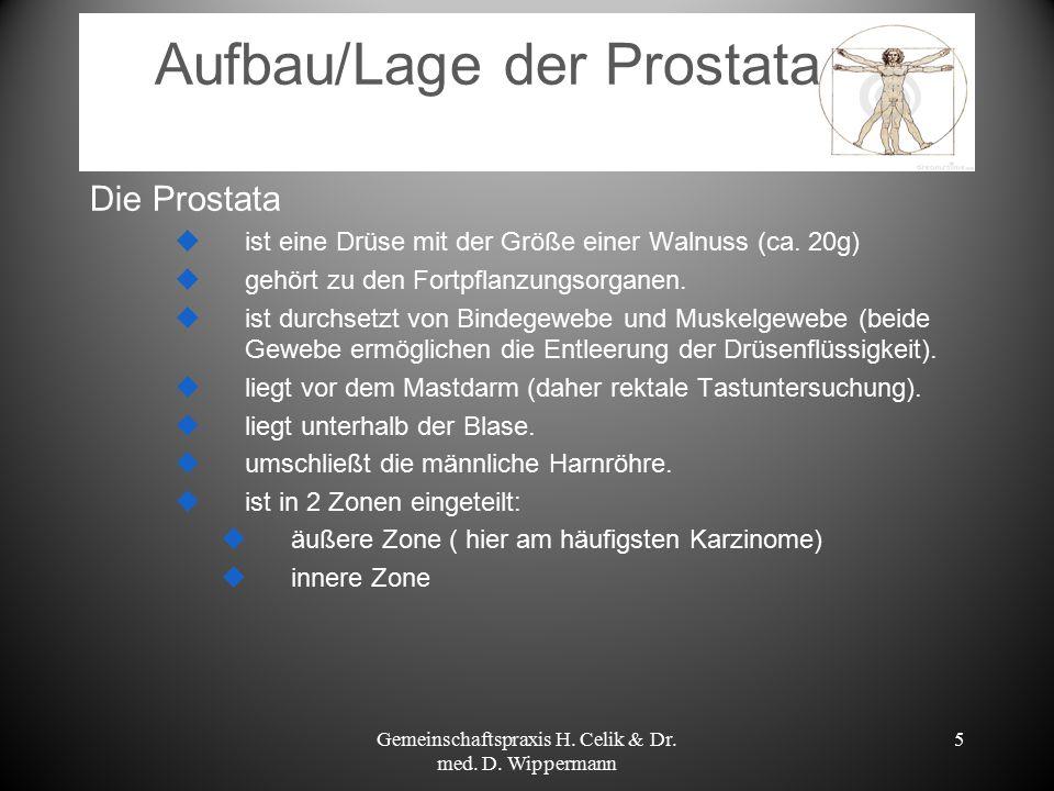 5 Aufbau/Lage der Prostata Die Prostata  ist eine Drüse mit der Größe einer Walnuss (ca. 20g)  gehört zu den Fortpflanzungsorganen.  ist durchsetzt