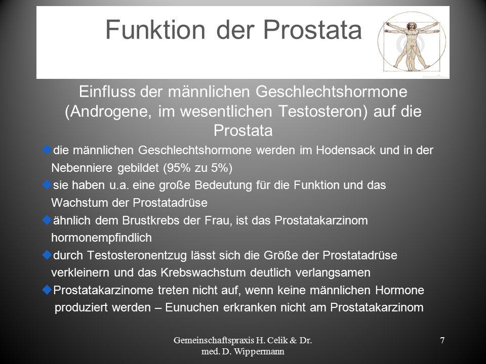 7 Funktion der Prostata Einfluss der männlichen Geschlechtshormone (Androgene, im wesentlichen Testosteron) auf die Prostata  die männlichen Geschlec