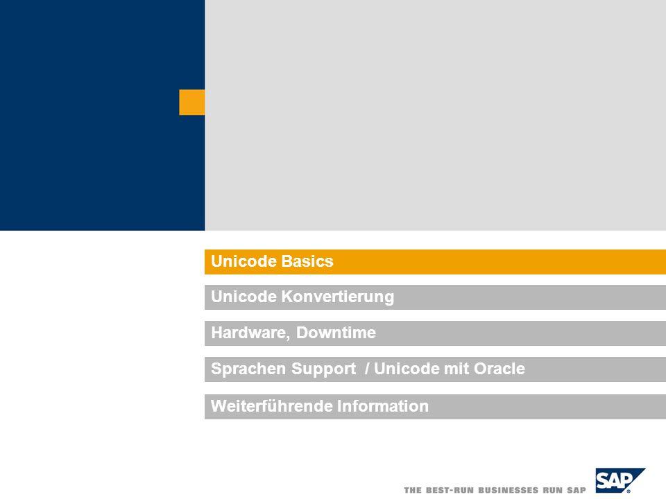 Unicode Basics Unicode Konvertierung Hardware, Downtime Sprachen Support / Unicode mit Oracle Weiterführende Information