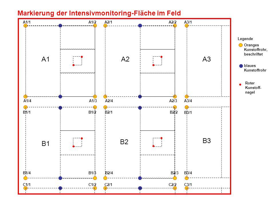 A1 A1/1A1/2 A2/1A2/2A3/1 A1/4A1/3 A2/4A2/3A3/4 A2A3 B1 B1/1B1/2 B1/4B1/3 B2/1B2/2 B2/4B2/3 B2 B3/1 B3/4 B3 Markierung der Intensivmonitoring-Fläche im Feld C1/1C1/2 C2/1C2/2C3/1 Oranges Kunstoffrohr, beschriftet blaues Kunstoffrohr Roter Kunstoff- nagel Legende