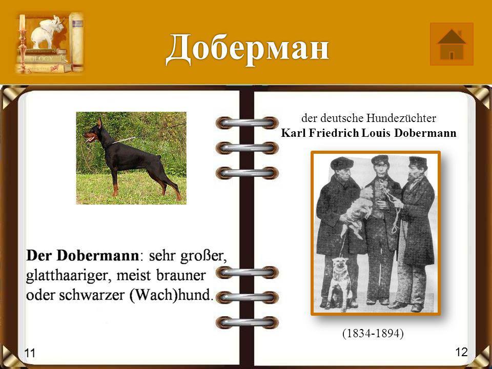 Дрезина der deutsche Erfinder Karl Friedrich Christian Ludwig Freiherr Drais von Sauerbronn (1785-1851) 14