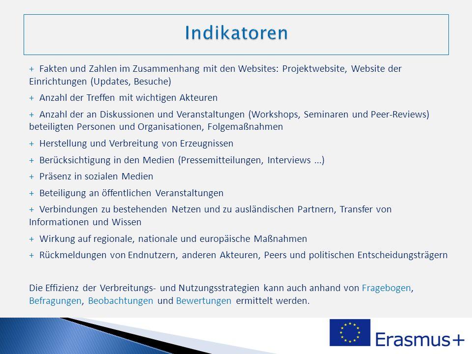 + Fakten und Zahlen im Zusammenhang mit den Websites: Projektwebsite, Website der Einrichtungen (Updates, Besuche) + Anzahl der Treffen mit wichtigen
