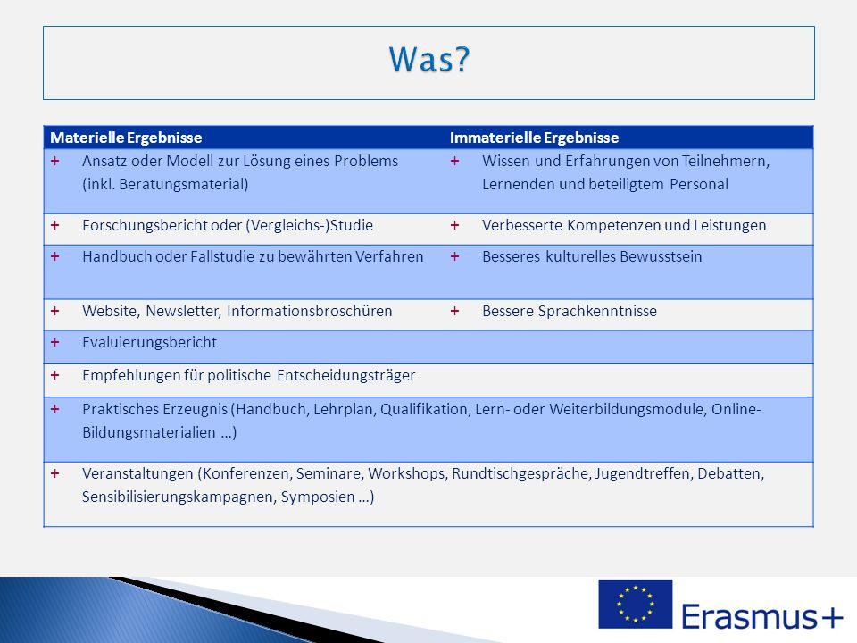 Materielle ErgebnisseImmaterielle Ergebnisse + Ansatz oder Modell zur Lösung eines Problems (inkl. Beratungsmaterial) + Wissen und Erfahrungen von Tei