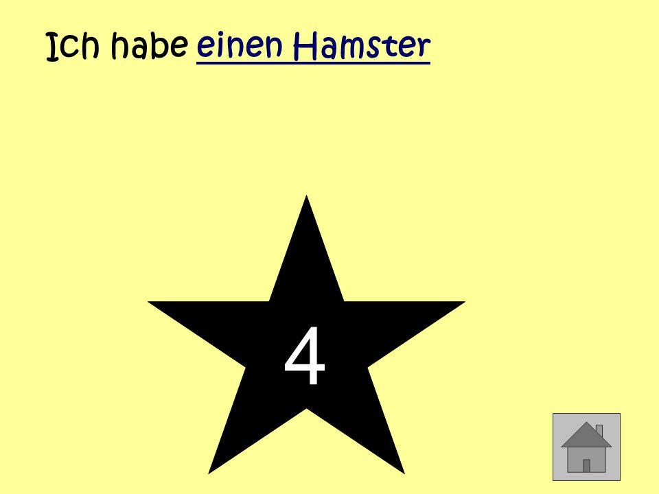 4 Ich habe einen Hamster