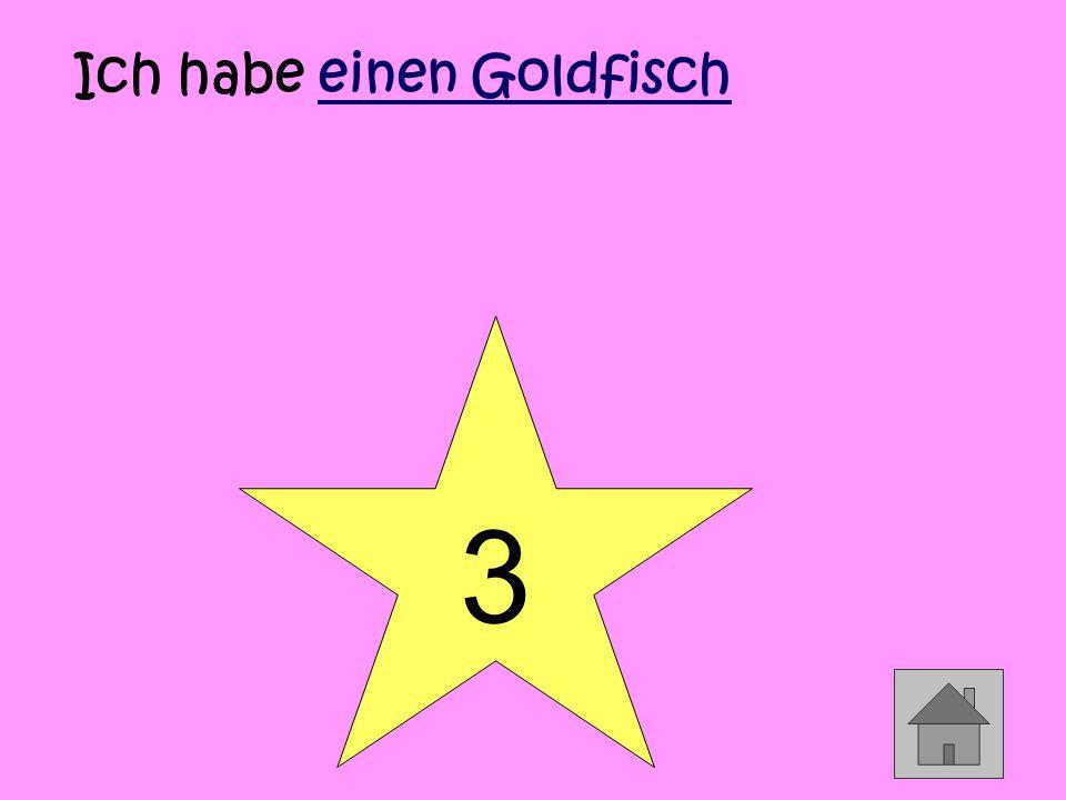 3 Ich habe einen Goldfisch