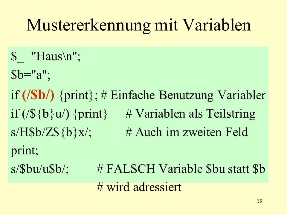 19 Mustererkennung mit Variablen $_=