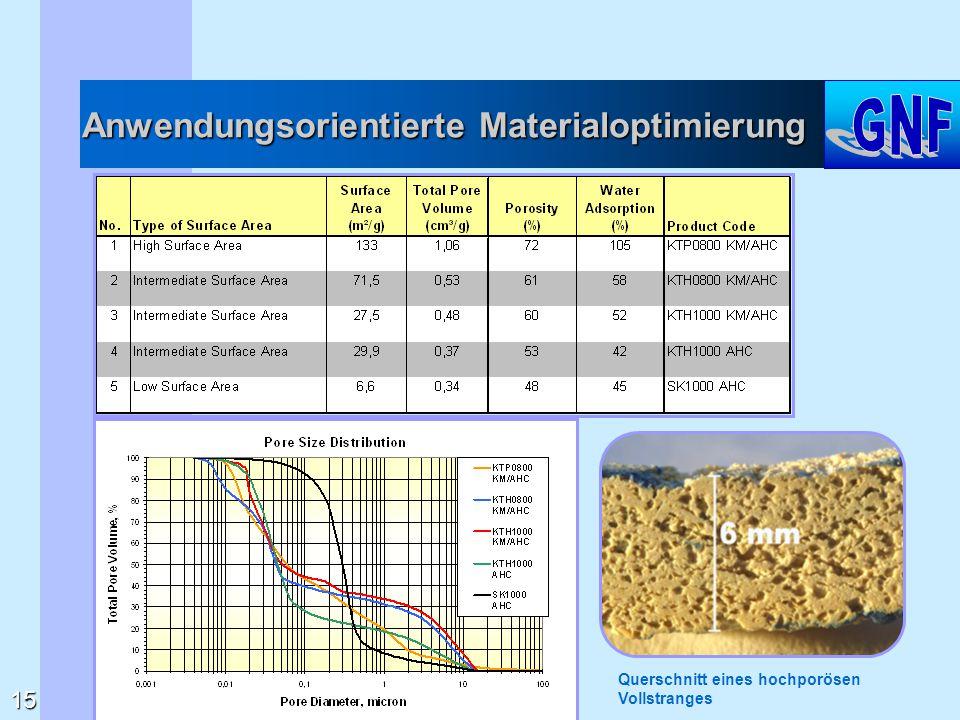 Anwendungsorientierte Materialoptimierung 15 Querschnitt eines hochporösen Vollstranges