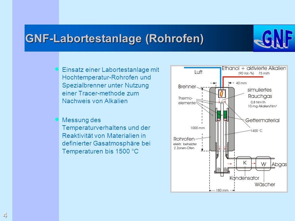 GNF-Labortestanlage (Rohrofen)  Einsatz einer Labortestanlage mit Hochtemperatur-Rohrofen und Spezialbrenner unter Nutzung einer Tracer-methode zum N