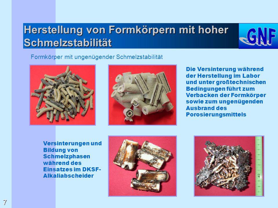 Hochporöse Trägermaterialien und Adsorbenzien hohe offene Porosität Schmelzstabilität bis über 1750 °C Hohlstränge Granulate Vollstränge 1400 °C 1000 °C 800 °C 18