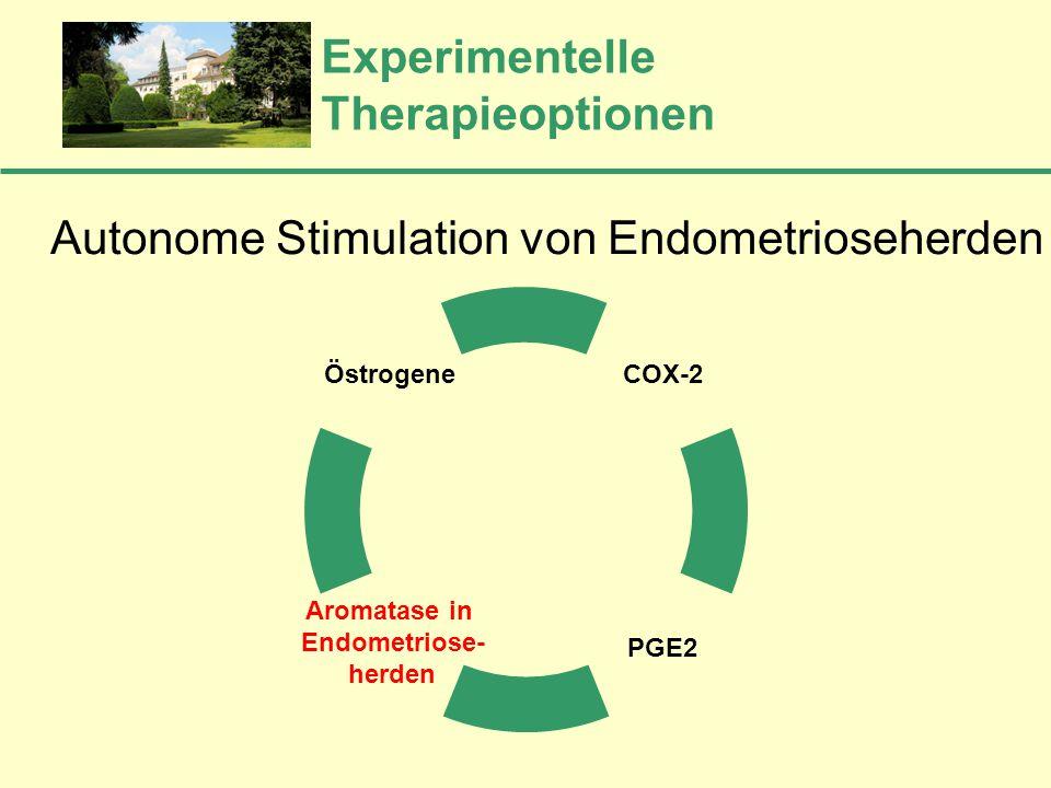 Experimentelle Therapieoptionen COX-2 PGE2 Aromatase in Endometriose- herden Östrogene Autonome Stimulation von Endometrioseherden