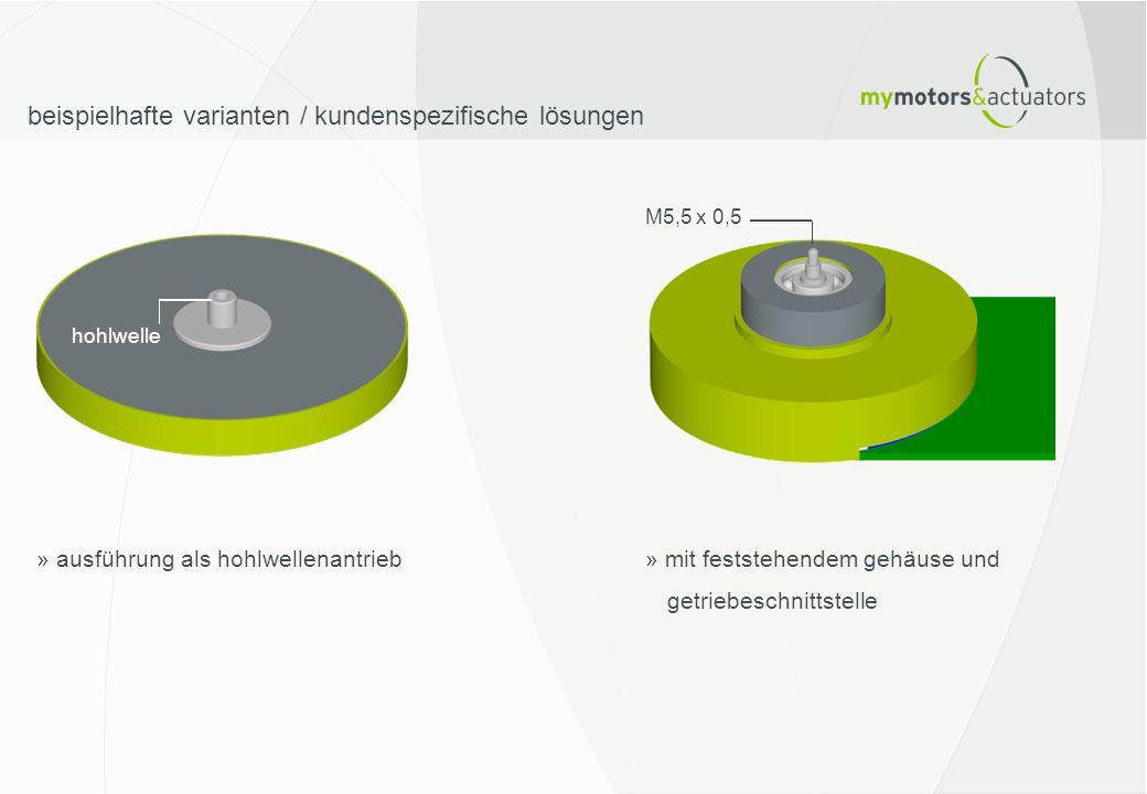 beispielhafte varianten / kundenspezifische lösungen » ausführung als hohlwellenantrieb hohlwelle M5,5 x 0,5 » mit feststehendem gehäuse und getriebes