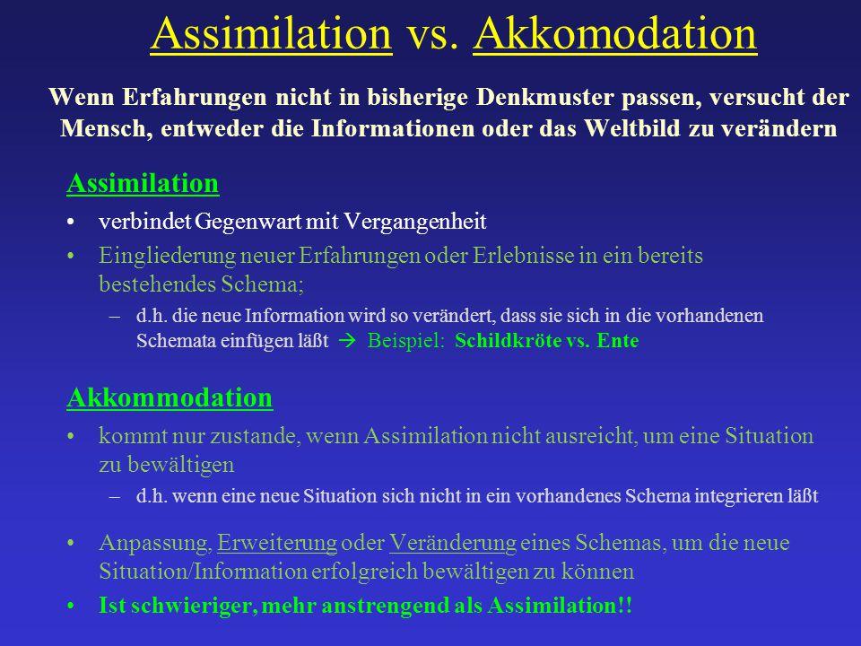 Assimilation vs. Akkomodation Wenn Erfahrungen nicht in bisherige Denkmuster passen, versucht der Mensch, entweder die Informationen oder das Weltbild