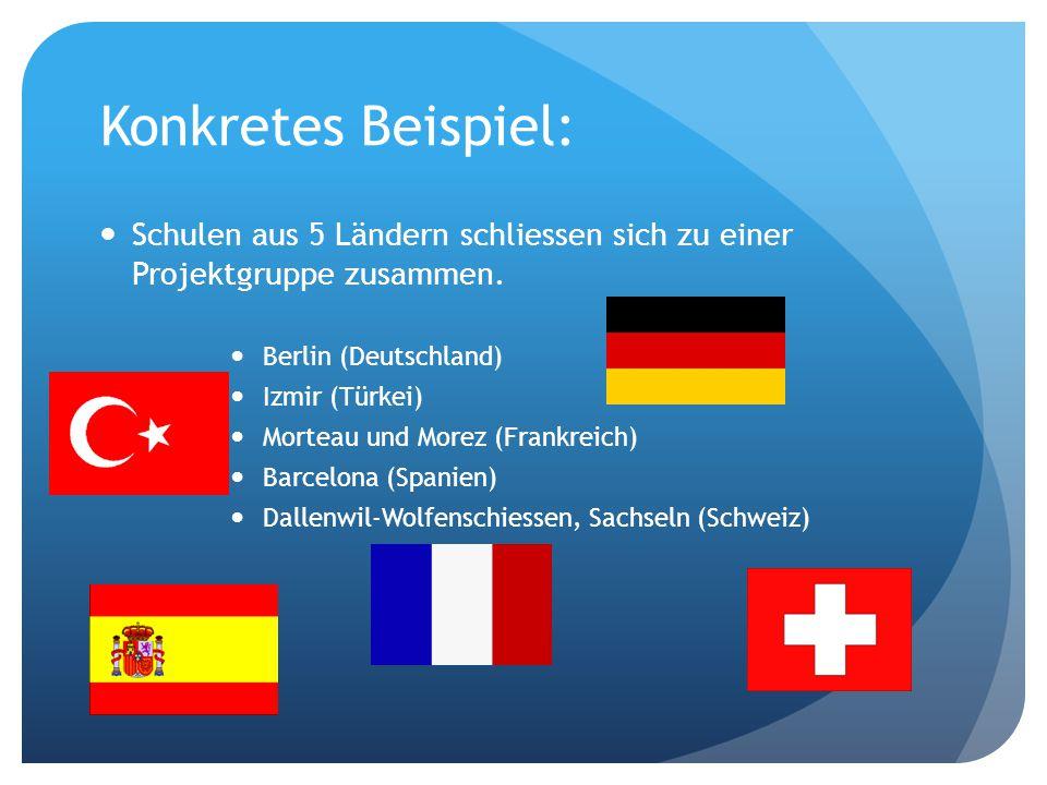 Konkretes Beispiel: Schulen aus 5 Ländern schliessen sich zu einer Projektgruppe zusammen.