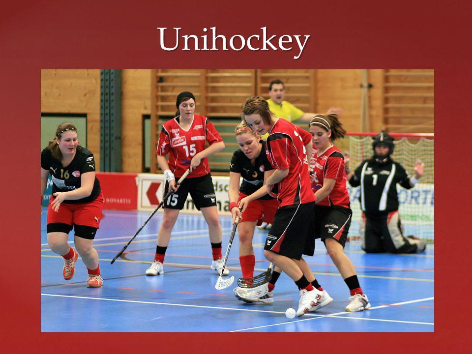  Der Unihockeystock ist zweiteilig (Schaufel, Schaft) und besteht aus Kunststoff. Unihockey