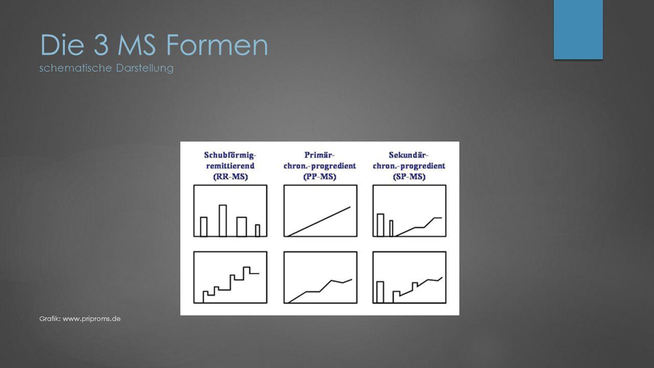 Die 3 MS Formen schematische Darstellung Grafik: www.priproms.de