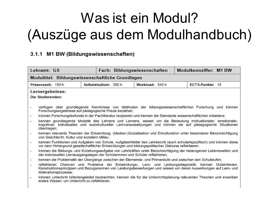 Was ist ein Modul? (Auszüge aus dem Modulhandbuch)