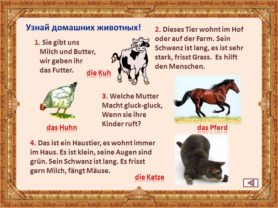 1. Sie gibt uns Milch und Butter, wir geben ihr das Futter. 2. Dieses Tier wohnt im Hof oder auf der Farm. Sein Schwanz ist lang, es ist sehr stark, f