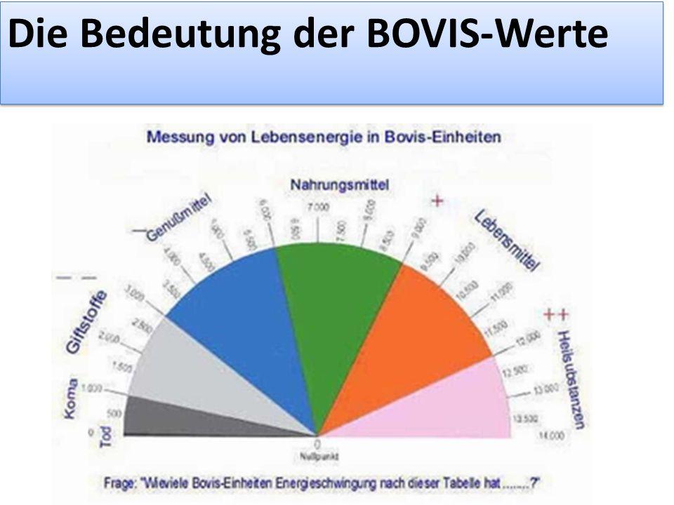 Die Bedeutung der BOVIS-Werte