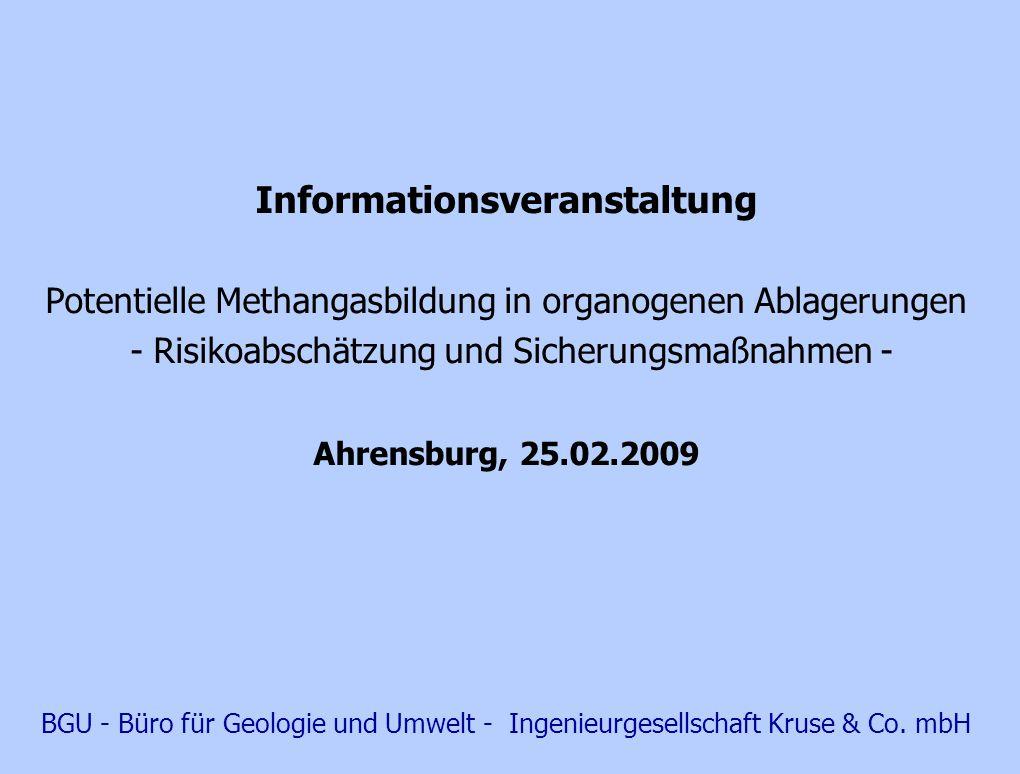 Gliederung A.Vorkommen, Entstehung und Eigenschaften von Methan (CH 4 ) B.