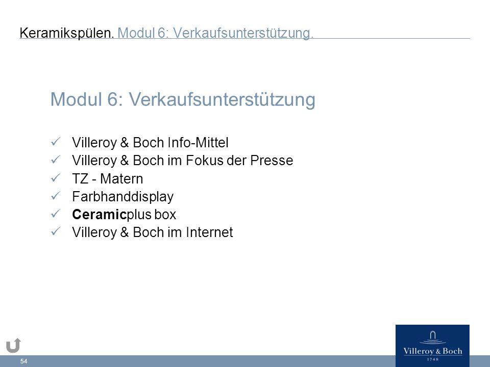 54 Modul 6: Verkaufsunterstützung Villeroy & Boch Info-Mittel Villeroy & Boch im Fokus der Presse TZ - Matern Farbhanddisplay Ceramicplus box Villeroy & Boch im Internet Keramikspülen.