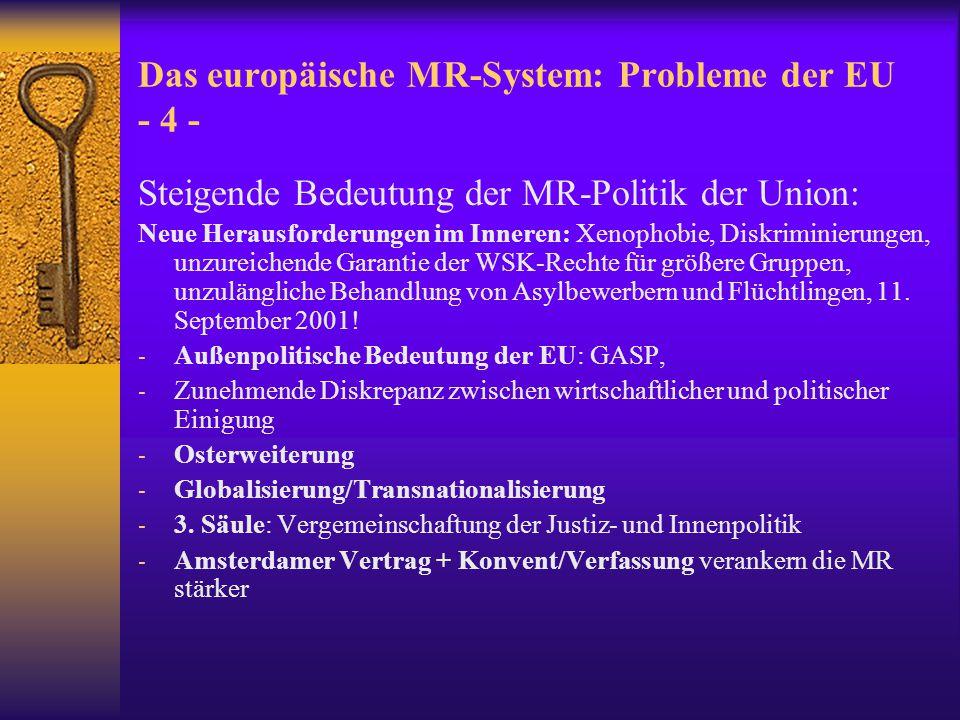Europäisches MR-System  Forderungen: EMRK und EU-Instrumente müssen besser aufeinander abgestimmt werden.