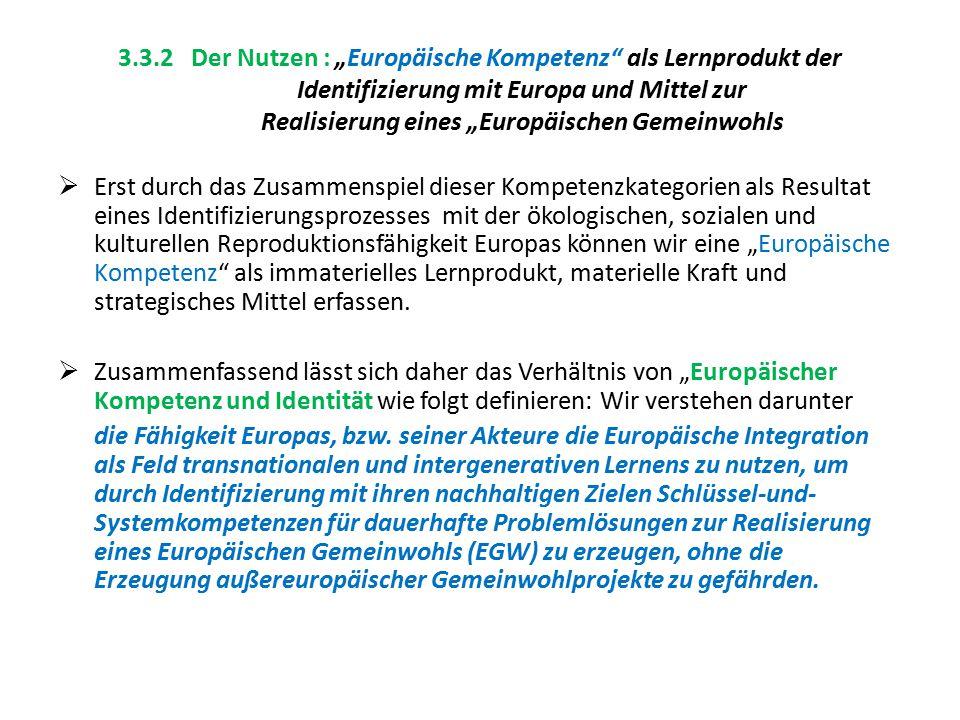 """3.3.2 Der Nutzen : """"Europäische Kompetenz"""" als Lernprodukt der Identifizierung mit Europa und Mittel zur Realisierung eines """"Europäischen Gemeinwohls"""