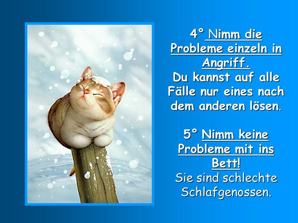 6° Nimm nicht die Probleme der anderen auf deine Schulter.