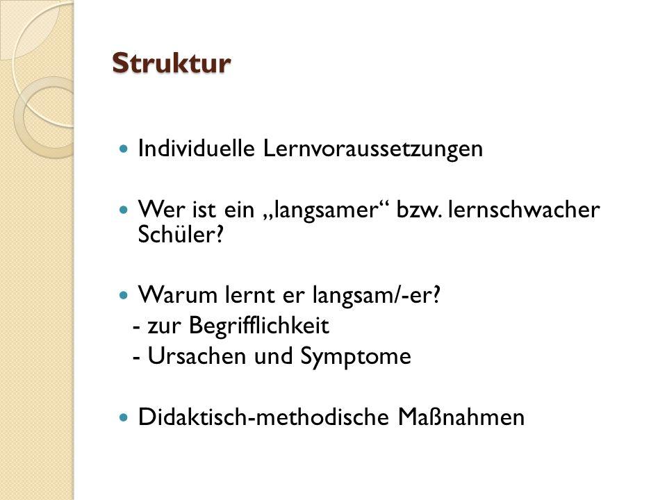 """Struktur Individuelle Lernvoraussetzungen Wer ist ein """"langsamer bzw."""
