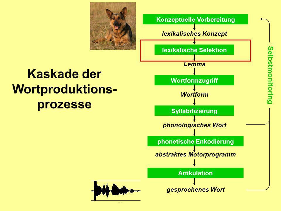 Kaskade der Wortproduktions- prozesse Konzeptuelle Vorbereitung lexikalische Selektion lexikalisches Konzept Lemma Wortformzugriff Wortform Syllabifiz