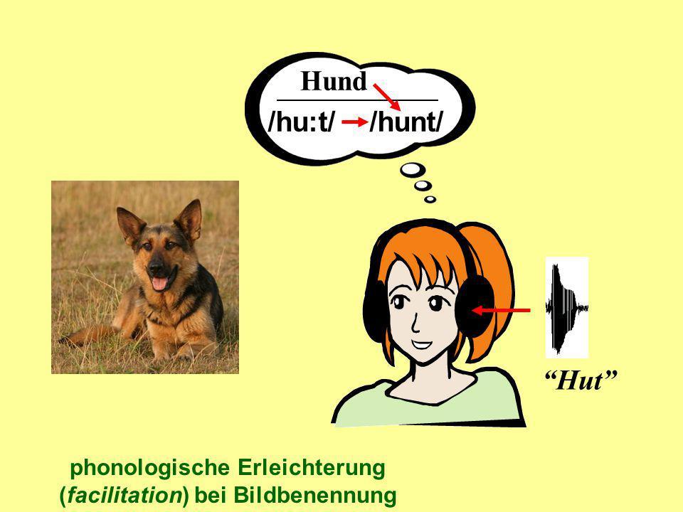 Hund Hut /hu:t/ /hunt/ phonologische Erleichterung (facilitation) bei Bildbenennung