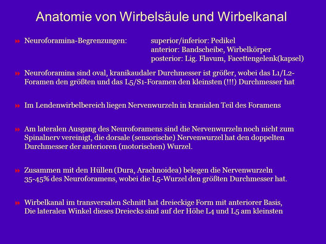 Anatomie von Wirbelsäule und Wirbelkanal  Neuroforamina-Begrenzungen:superior/inferior: Pedikel anterior: Bandscheibe, Wirbelkörper posterior: Lig. F