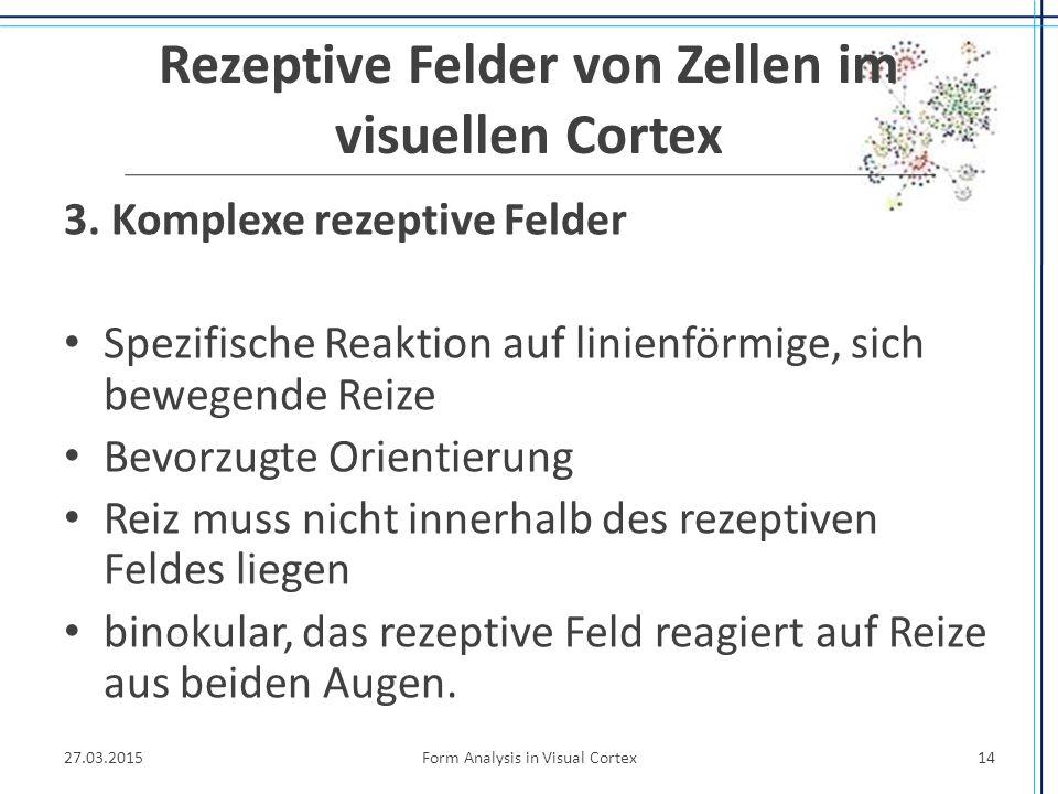 Rezeptive Felder von Zellen im visuellen Cortex 3. Komplexe rezeptive Felder Spezifische Reaktion auf linienförmige, sich bewegende Reize Bevorzugte O