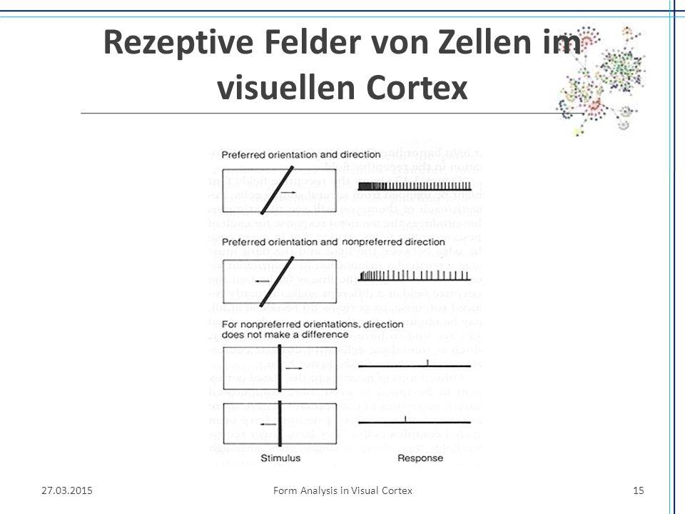 Rezeptive Felder von Zellen im visuellen Cortex 27.03.2015Form Analysis in Visual Cortex15