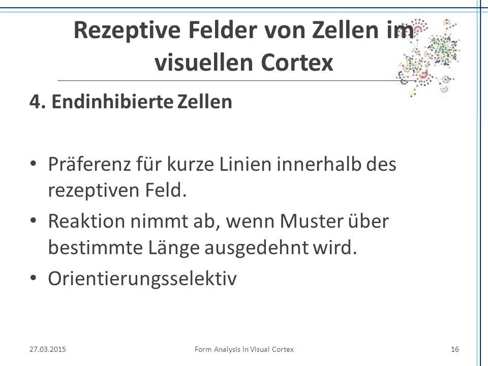 Rezeptive Felder von Zellen im visuellen Cortex 4. Endinhibierte Zellen Präferenz für kurze Linien innerhalb des rezeptiven Feld. Reaktion nimmt ab, w