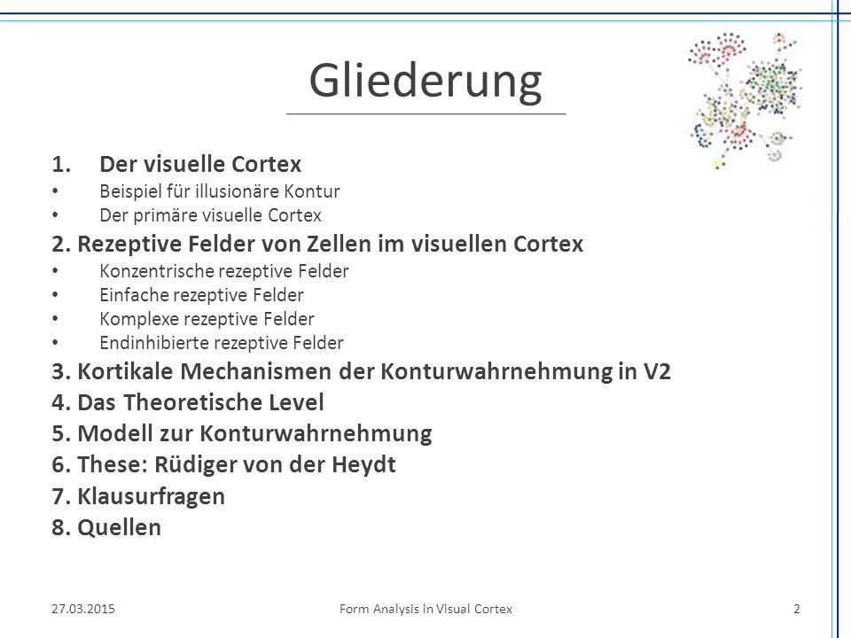 Gliederung 1.Der visuelle Cortex Beispiel für illusionäre Kontur Der primäre visuelle Cortex 2. Rezeptive Felder von Zellen im visuellen Cortex Konzen