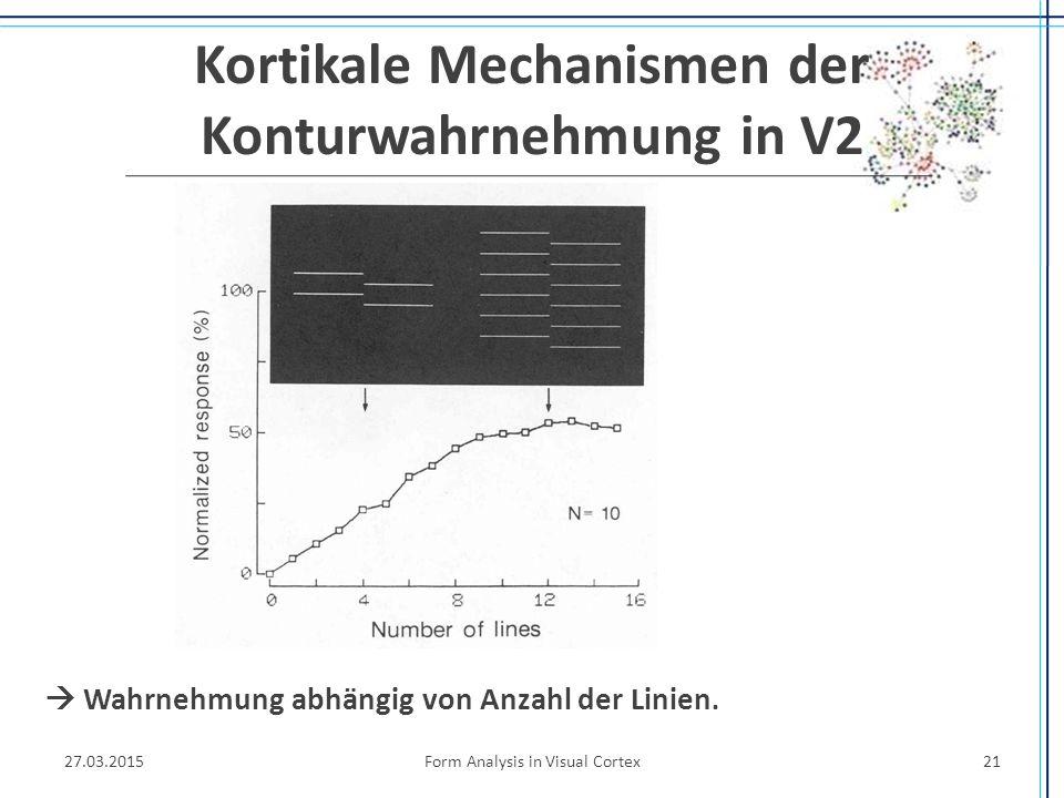 Kortikale Mechanismen der Konturwahrnehmung in V2 27.03.2015Form Analysis in Visual Cortex21  Wahrnehmung abhängig von Anzahl der Linien.